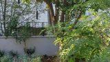 גינה בבית בכפר סבא בשילוב עצי פרי